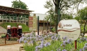 loomaaed