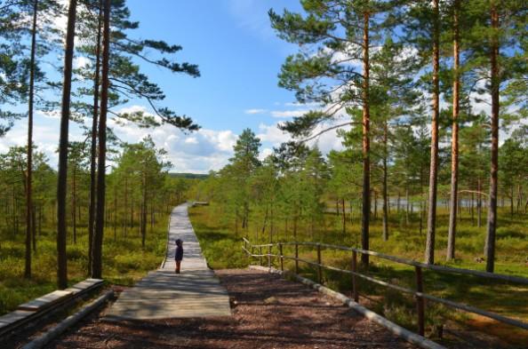 Foto: reisijutud.com